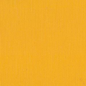 Firenze Trans Yellow