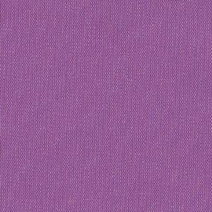 Firenze Trans Purple