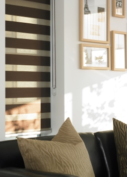 Lunatine Translucent Zebra Blinds