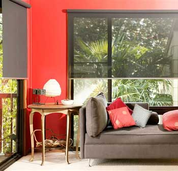 Solarview - Screen Roller Blinds
