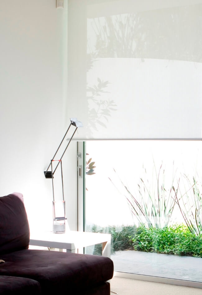 Vivid Collection - Screen Roller Blinds